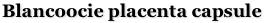 Blancoocie Placenta