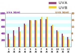 年間の紫外線量の変化